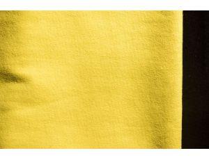 Двунить жёлтая