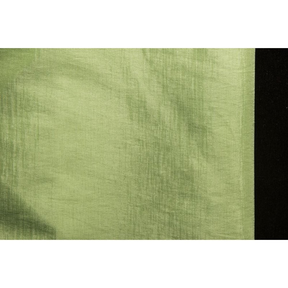 Бенгалин светло-зелёный